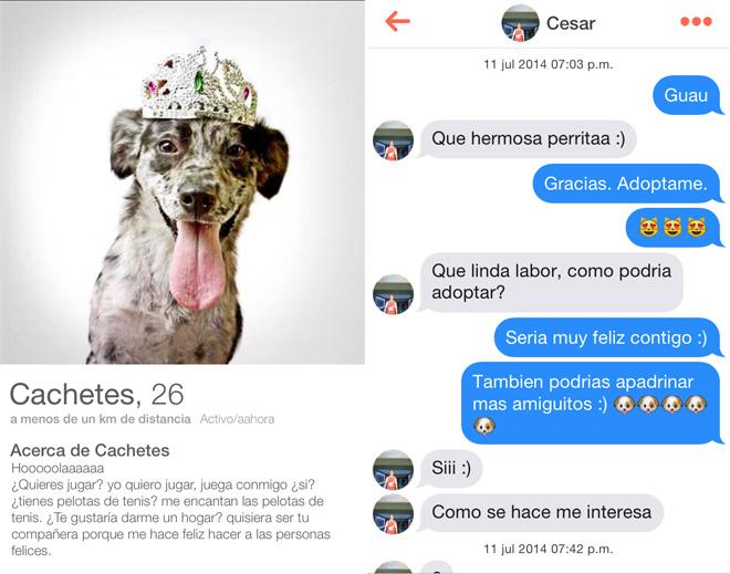 Tinder - Colombie - la ADA (Asociacion Defensora de Animale)
